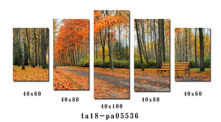 5 Panel  Art on Canvas Painting Wall Picture Print Modern Home Decor Framed Ready to Hang